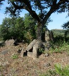 20110629003426-dolmen-1c.jpg