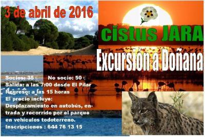 20160309220038-excursion-a-donana-blog.jpg